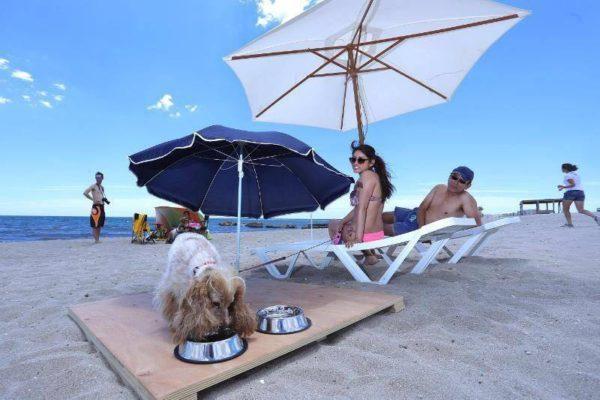 platja-gossos-aiguamarga