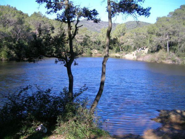 llac-petit-terrassa