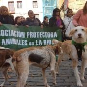 Asociación Protectora La Rioja animalados
