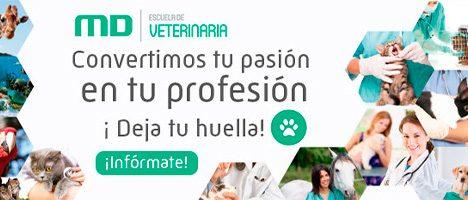 Escuela Veterinaria Master Logo