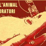Concentración en Valencia para pedir el fin de la experimentación animal
